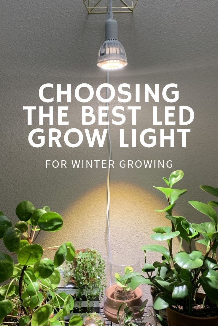 Choosing The Best Led Grow Light For Winter Growing